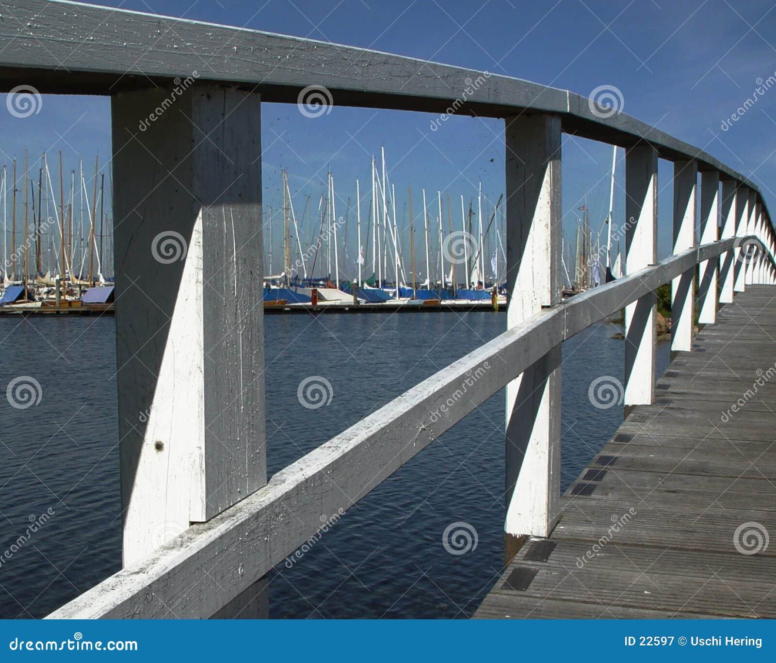 Ponte branca