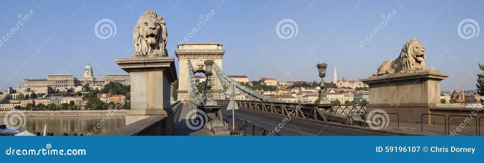 Ponte a catena nel panorama di Budapest