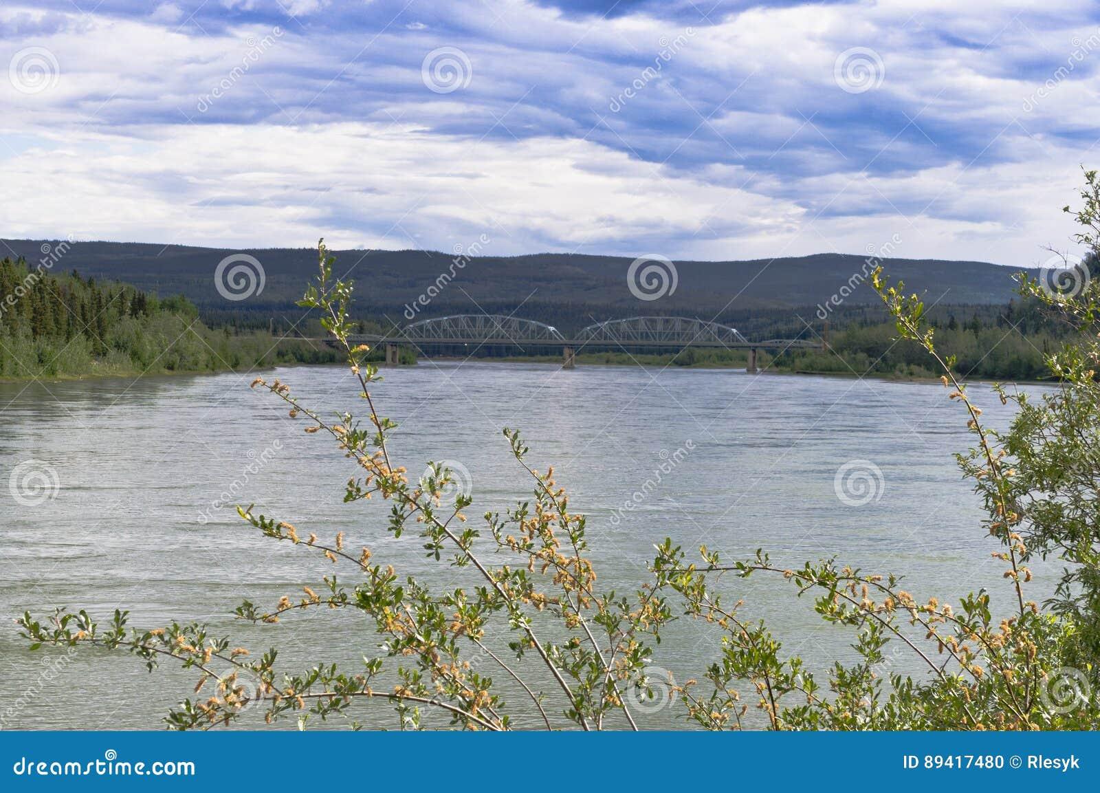 Ponte de aço através do Rio Yukon