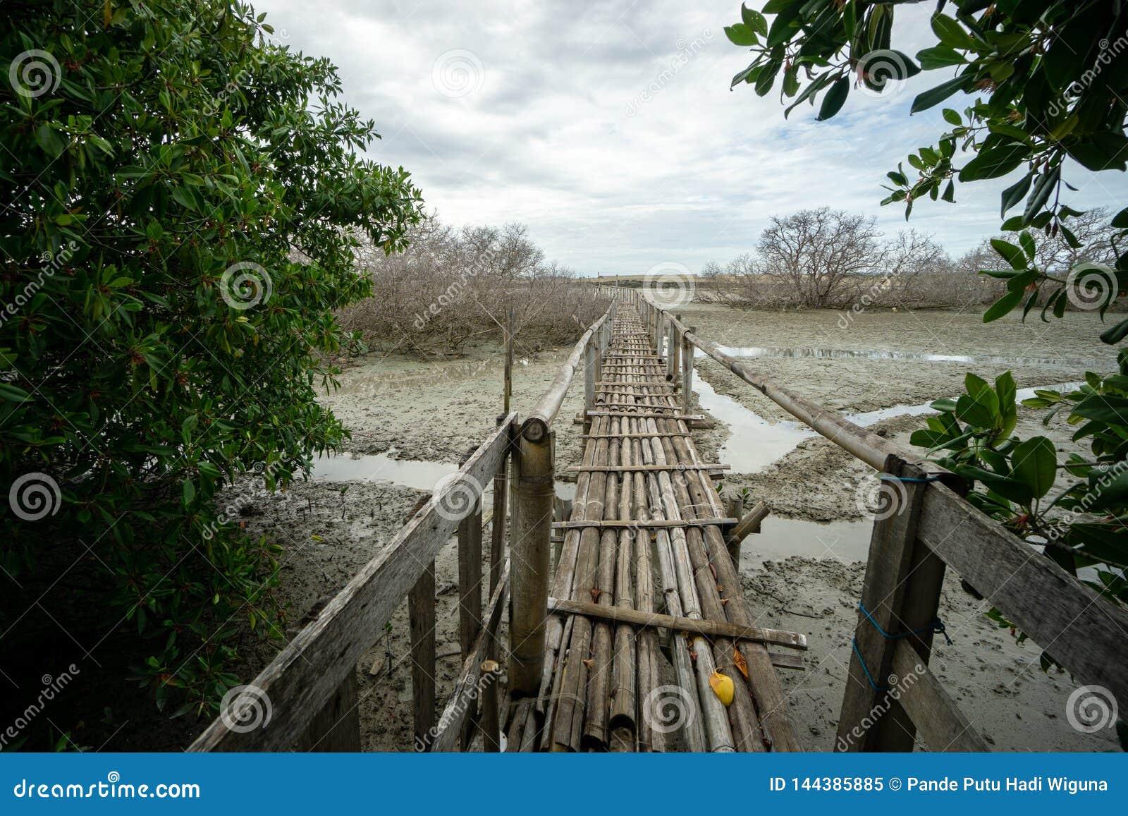 Ponte de bambu r?stica perto dos portos Bali de Benoa N?o ? conectar a em qualquer lugar, apenas um lugar para os povos que quere