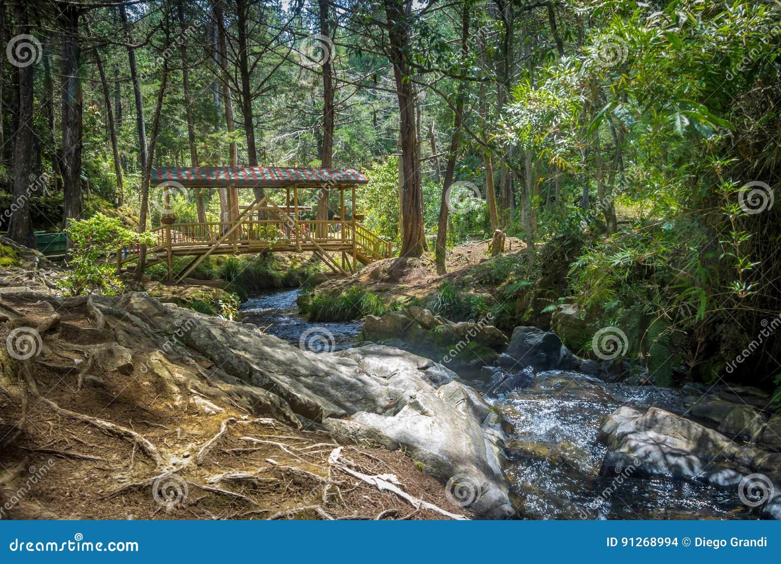 Ponte de madeira coberta colorida pequena - Parque Arvi, Medellin, Colômbia