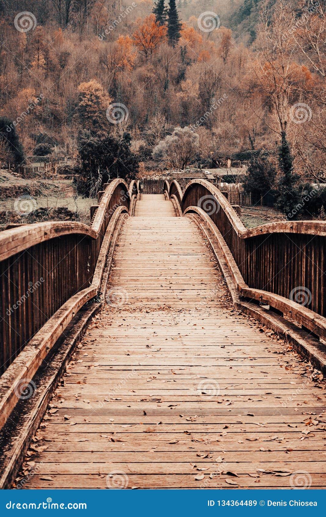 Ponte de madeira em uma paisagem do outono