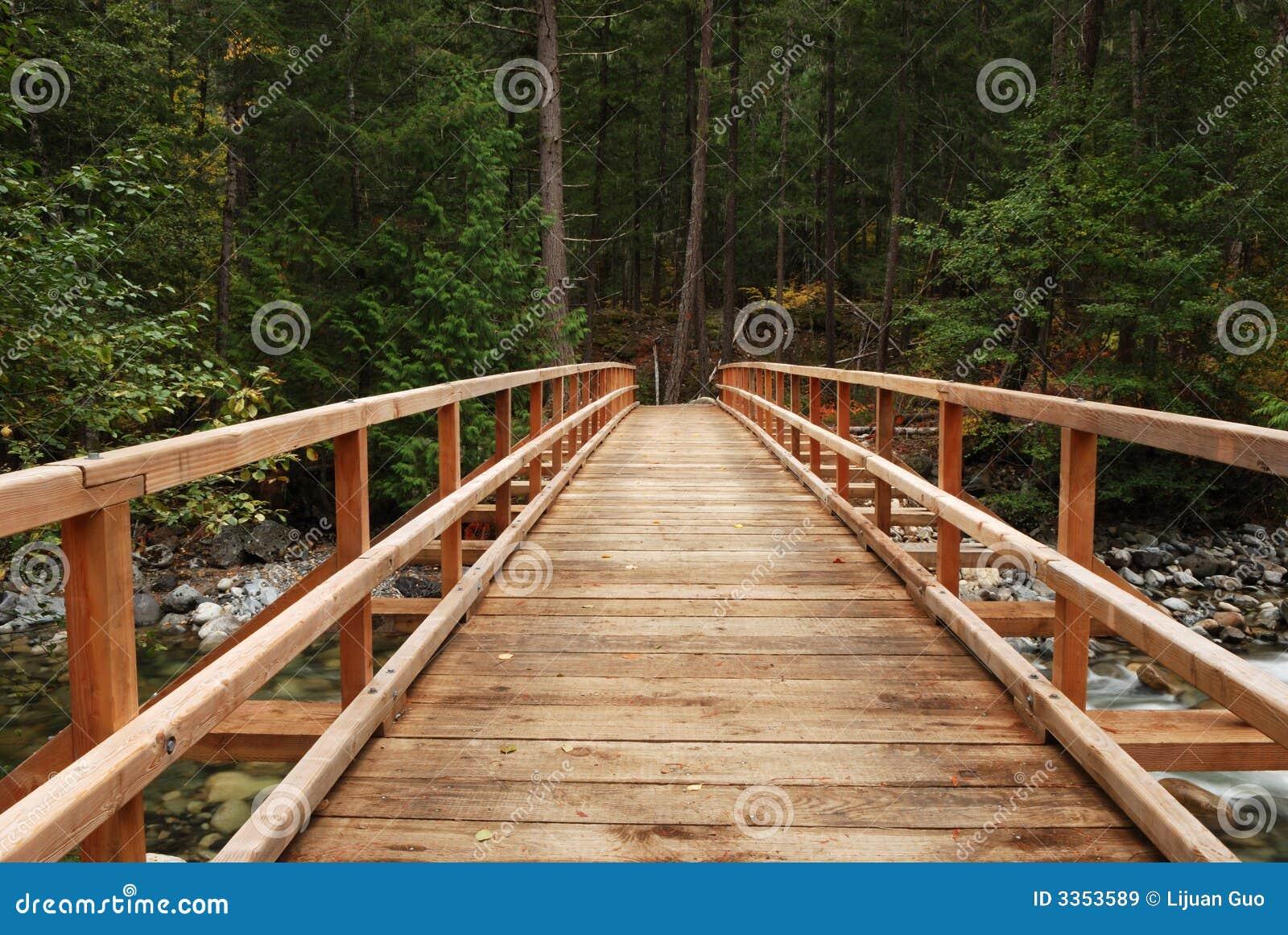 Ponte de madeira na floresta