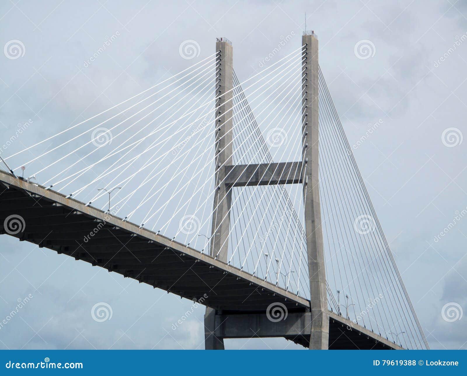 Ponte de suspensão no savana, GA