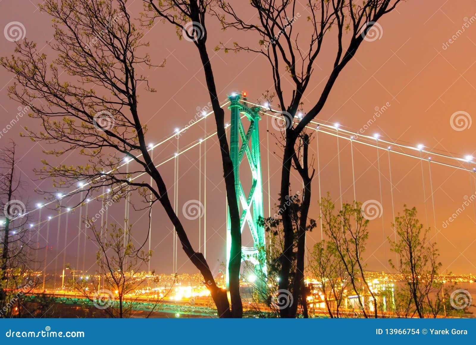 Ponte de Vancôver