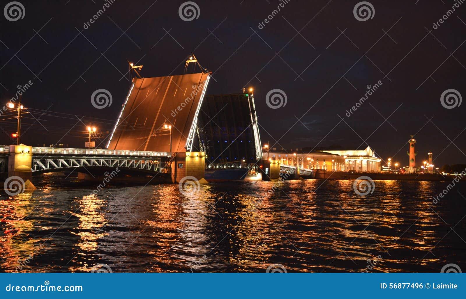 Ponte del palazzo nella notte St Petersburg
