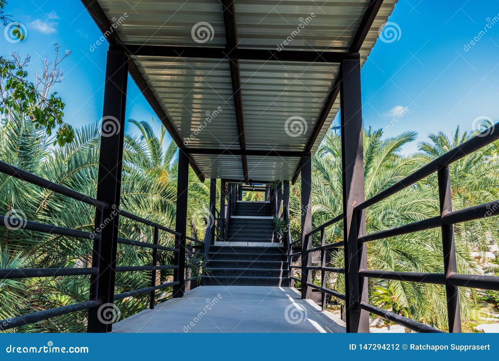 Ponte del passaggio pedonale del giardino andare al punto di vista