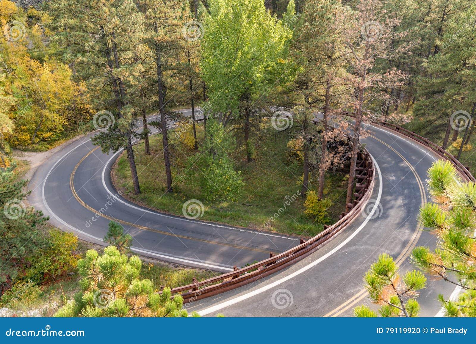 Ponte della treccia di Black Hills