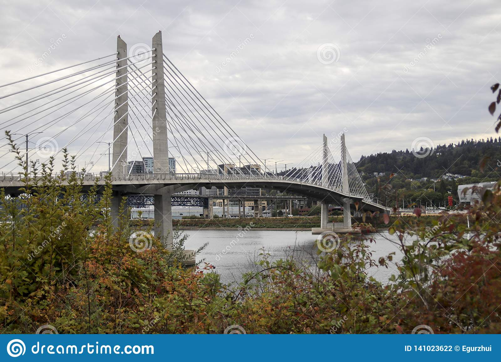 Ponte di incrocio di Tilikum a Portland, Oregon