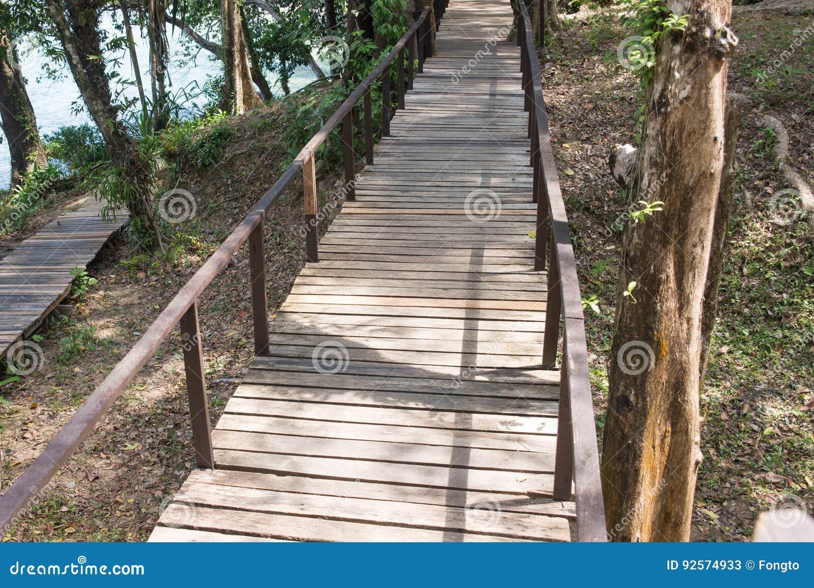 Ponte di legno lungo la foresta
