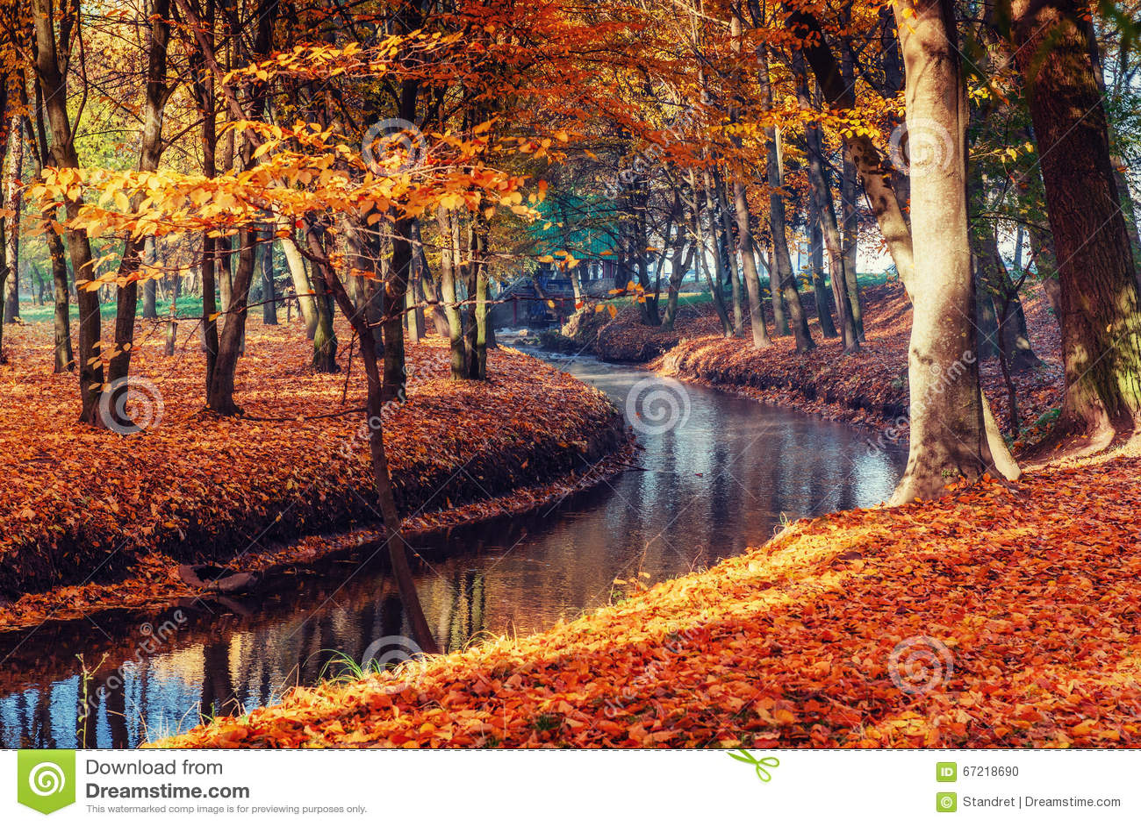 Ponte di modo della passeggiata sopra il fiume con gli alberi variopinti nel tempo di autunno