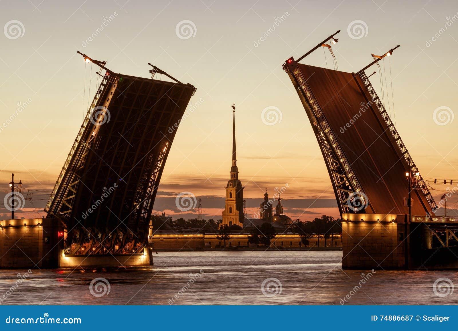 Ponte nas noites brancas, St Petersburg do palácio, Rússia