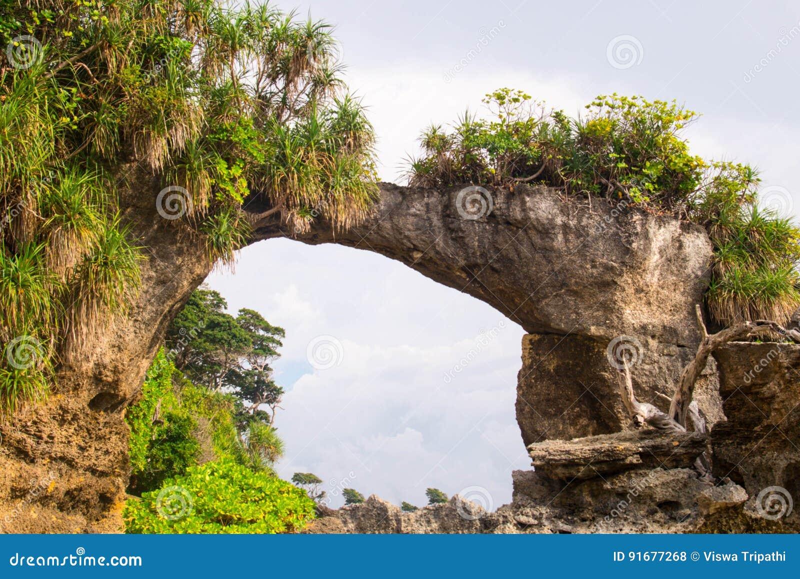 Ponte natural em Neil Island