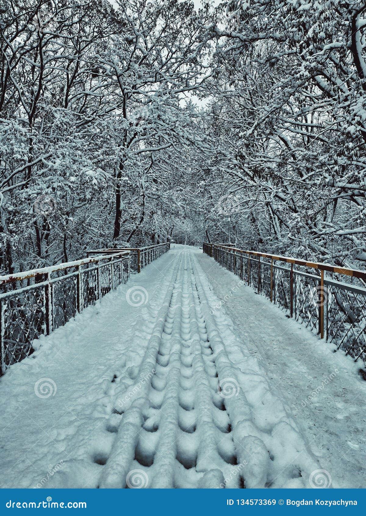 Ponte nevado