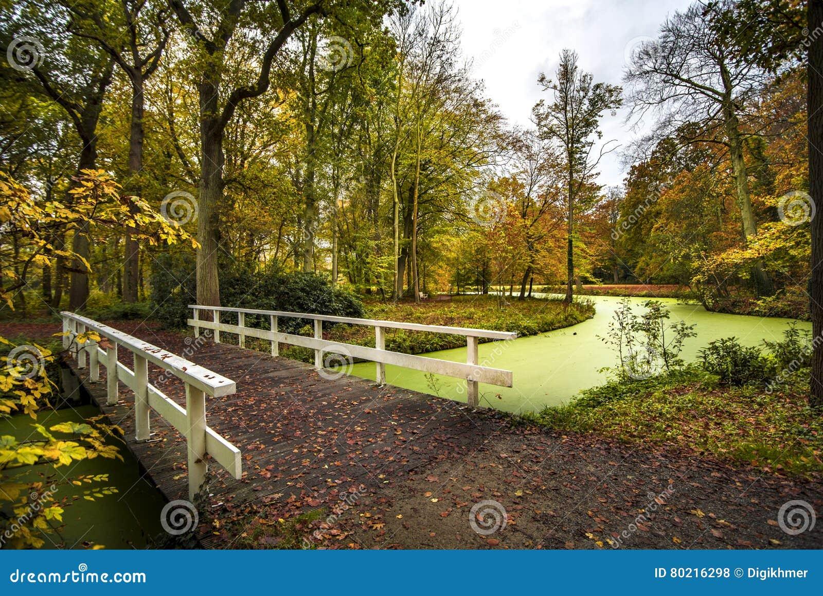 Ponte olandese del paese in autunno