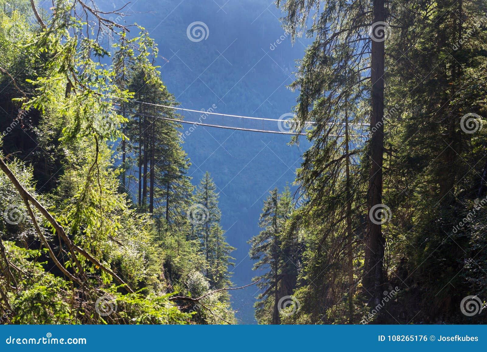 Ponte sospeso sulla traccia alpina attraverso la gola dell inferno, Schladming, Austria