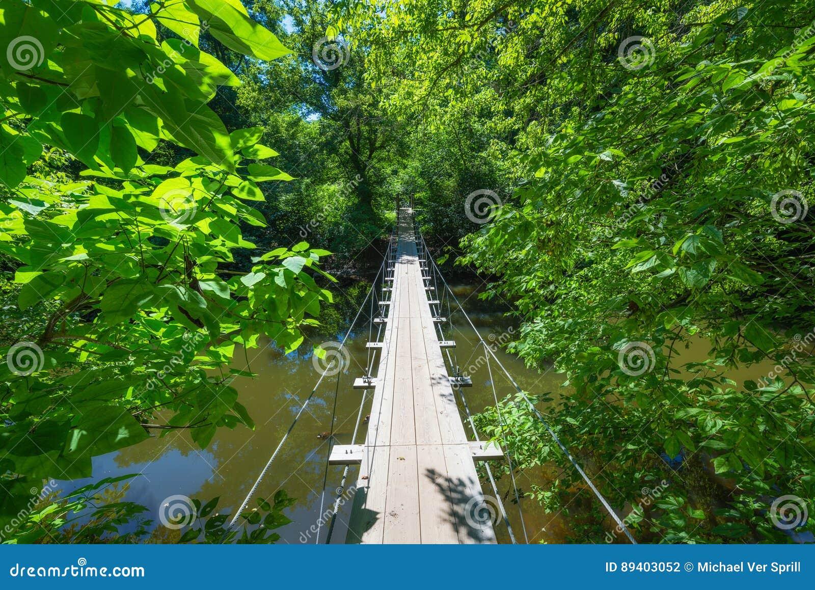 Ponte suspendida do fio através de um rio