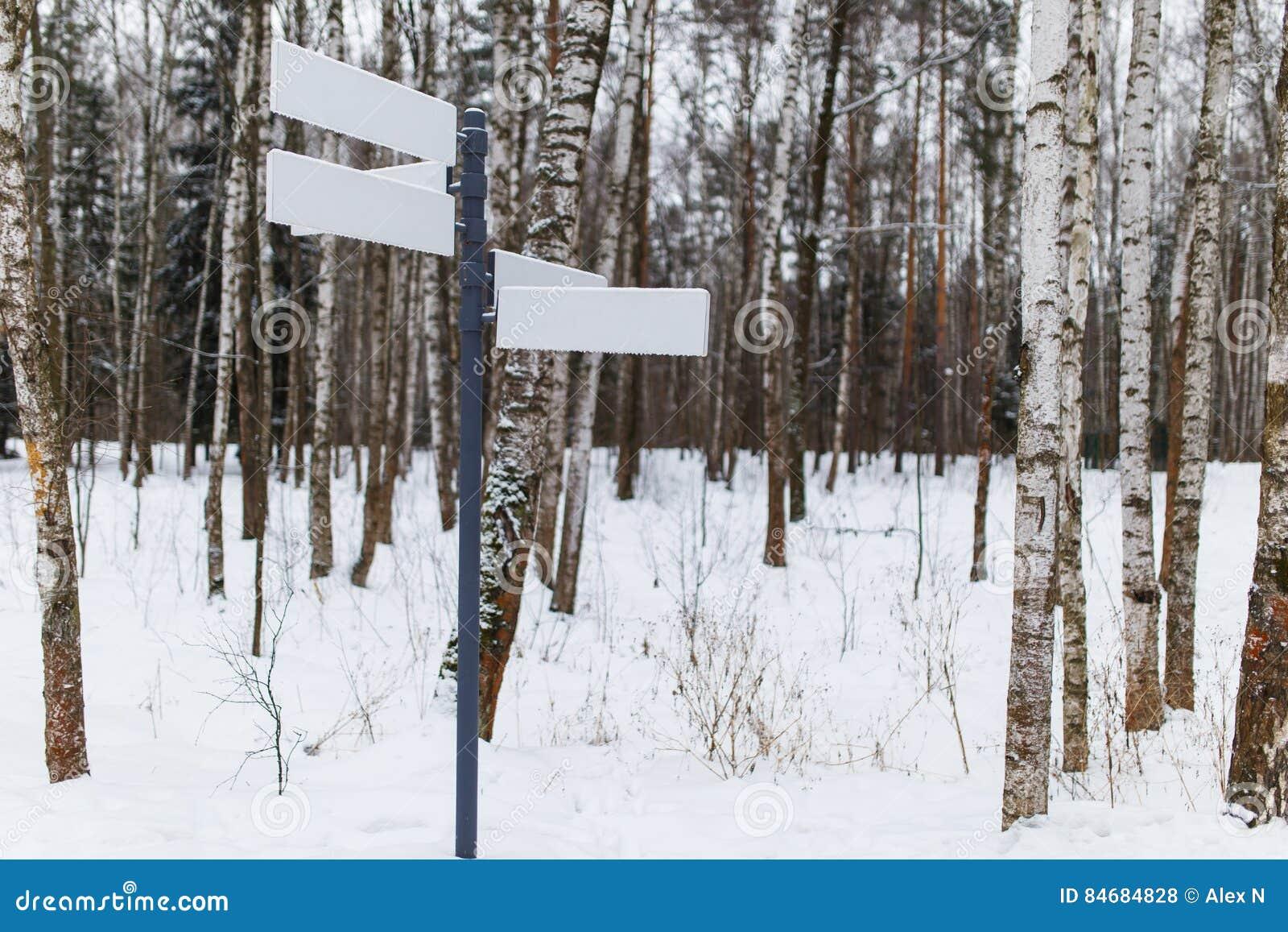 Ponteiro puro na estrada de floresta