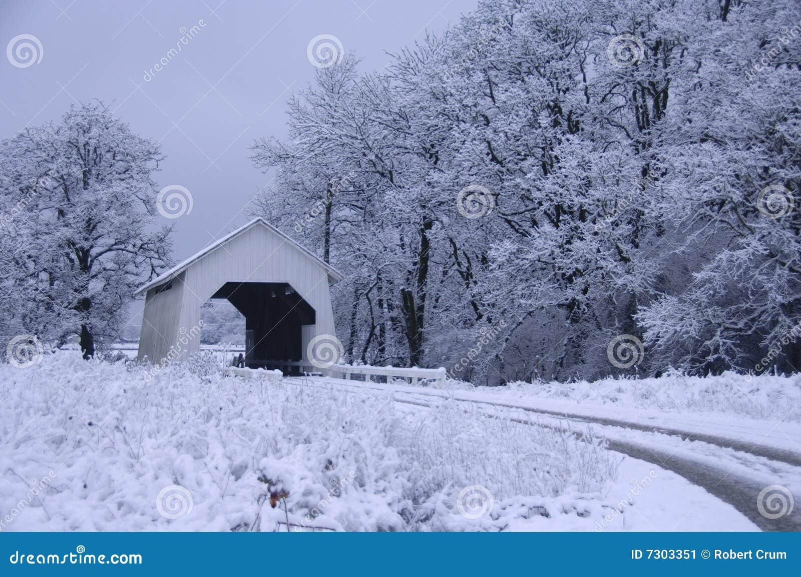 Ponticello coperto nella neve