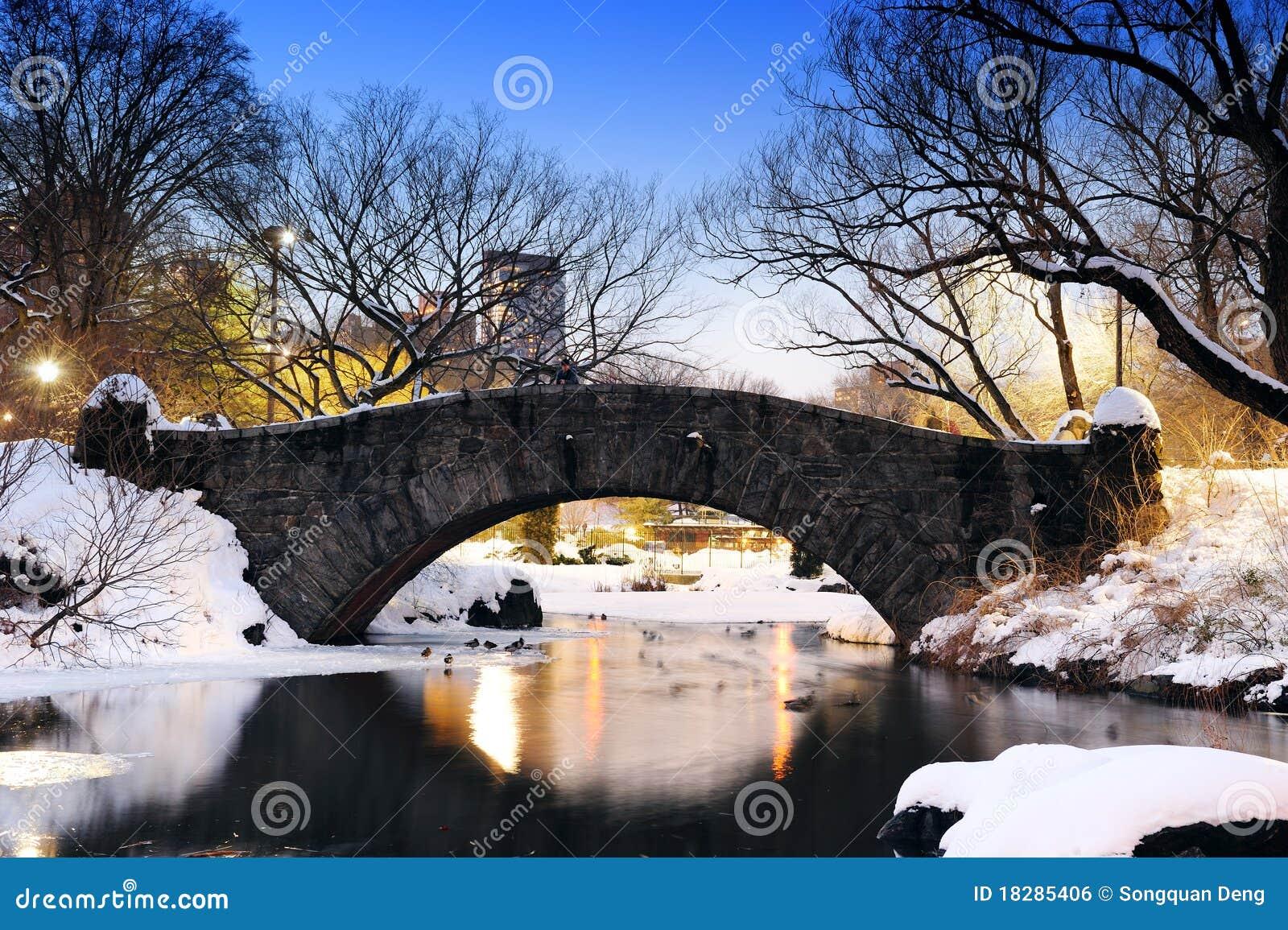 Ponticello di New York City Central Park in inverno
