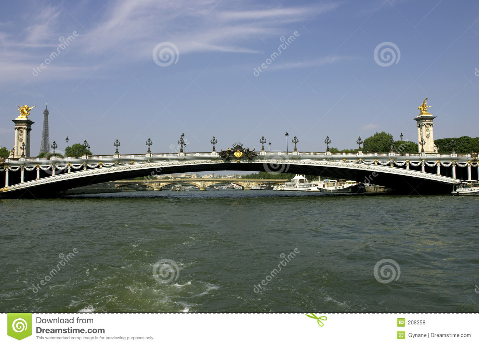 Ponticello di Pont Alexandre III sopra la senna Parigi Francia del fiume