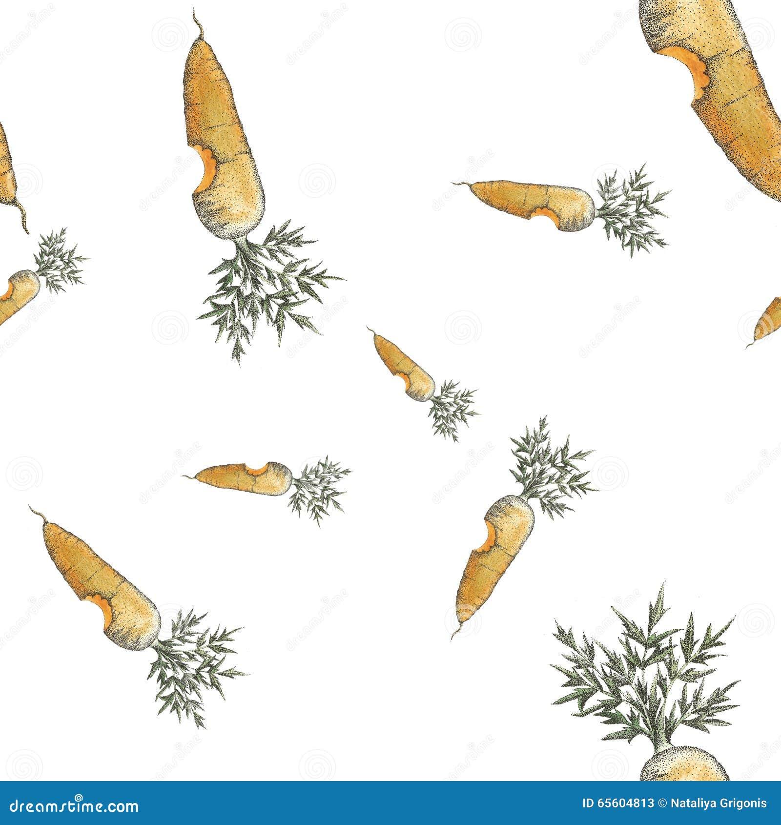 Pontilhismo sem emenda mordido do teste padrão da cenoura