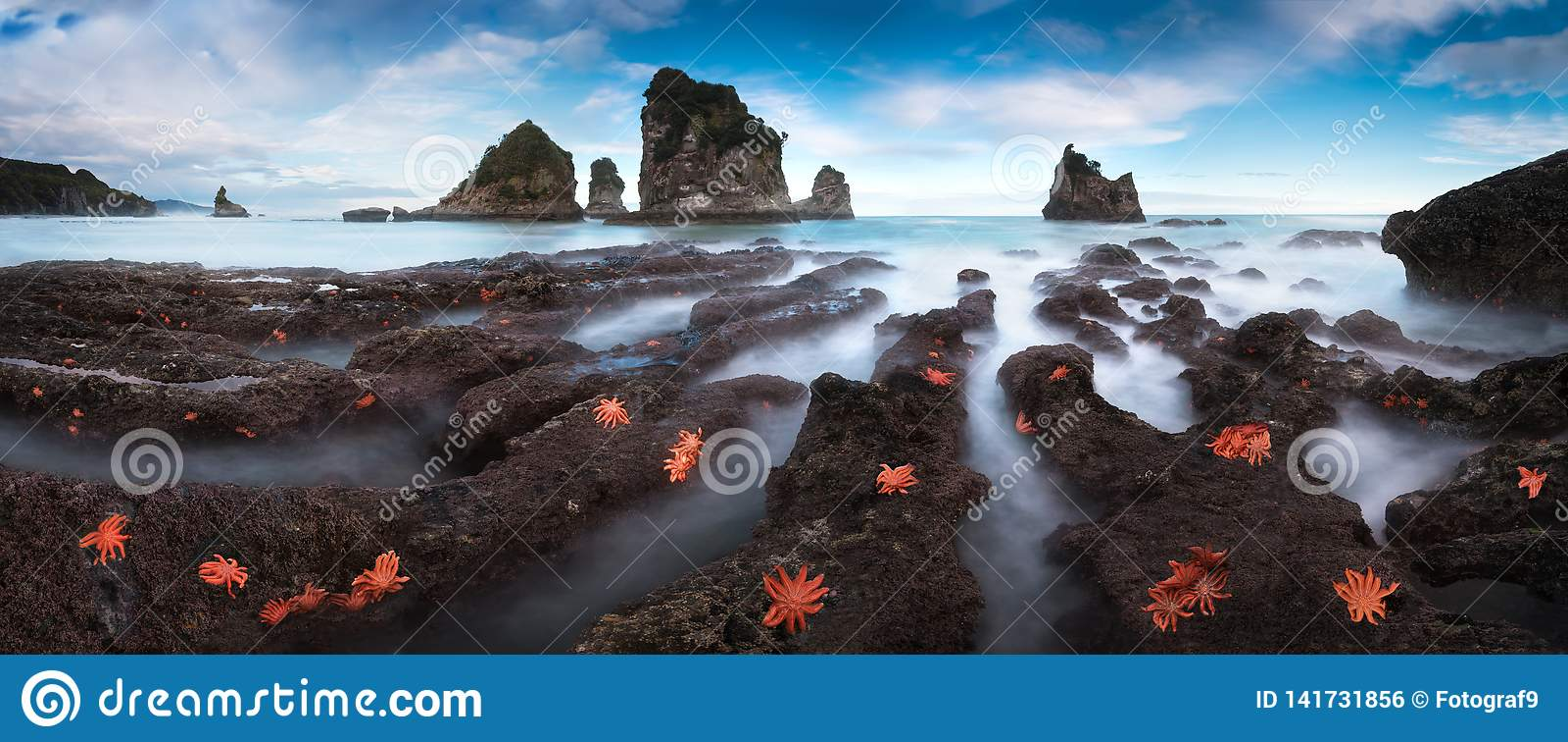 Ponto da baía de Motukiekie Uma exposição longa de uma cena selvagem, áspera da natureza da costa oeste da ilha sul de Nova Zelân
