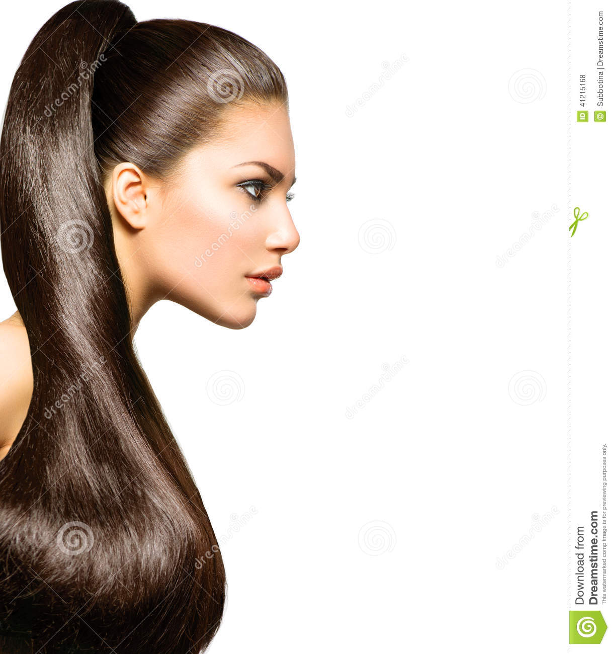 Ponytail Hairstyle. Beauty with Long Brown Hair