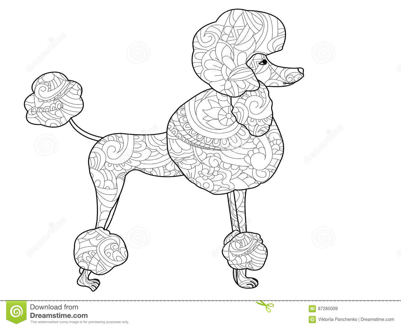 poodle dog coloring vector for adults stock vector image 87285009