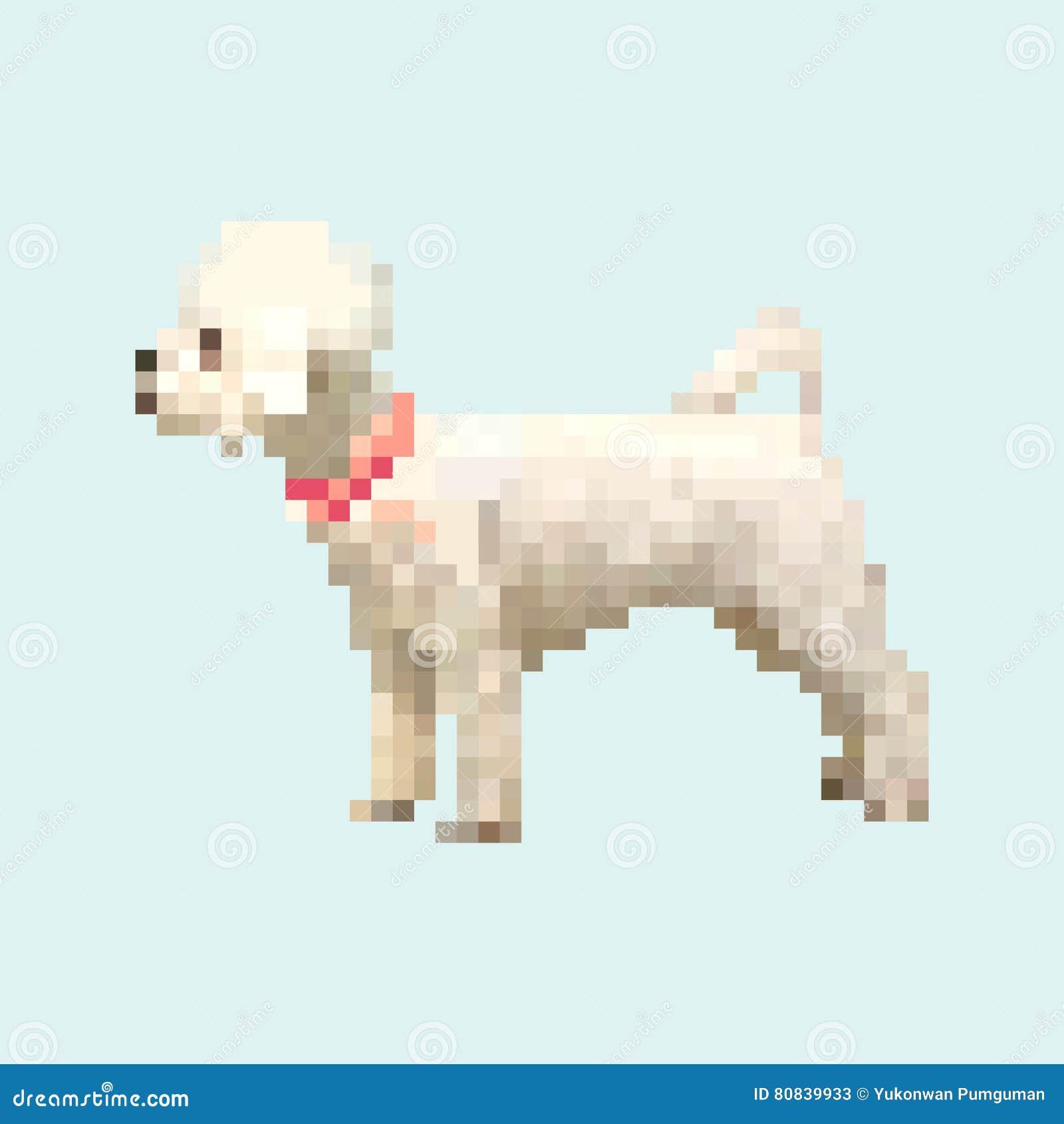 Poodle Dog Pixel Art Vector Pet Stock Vector Illustration