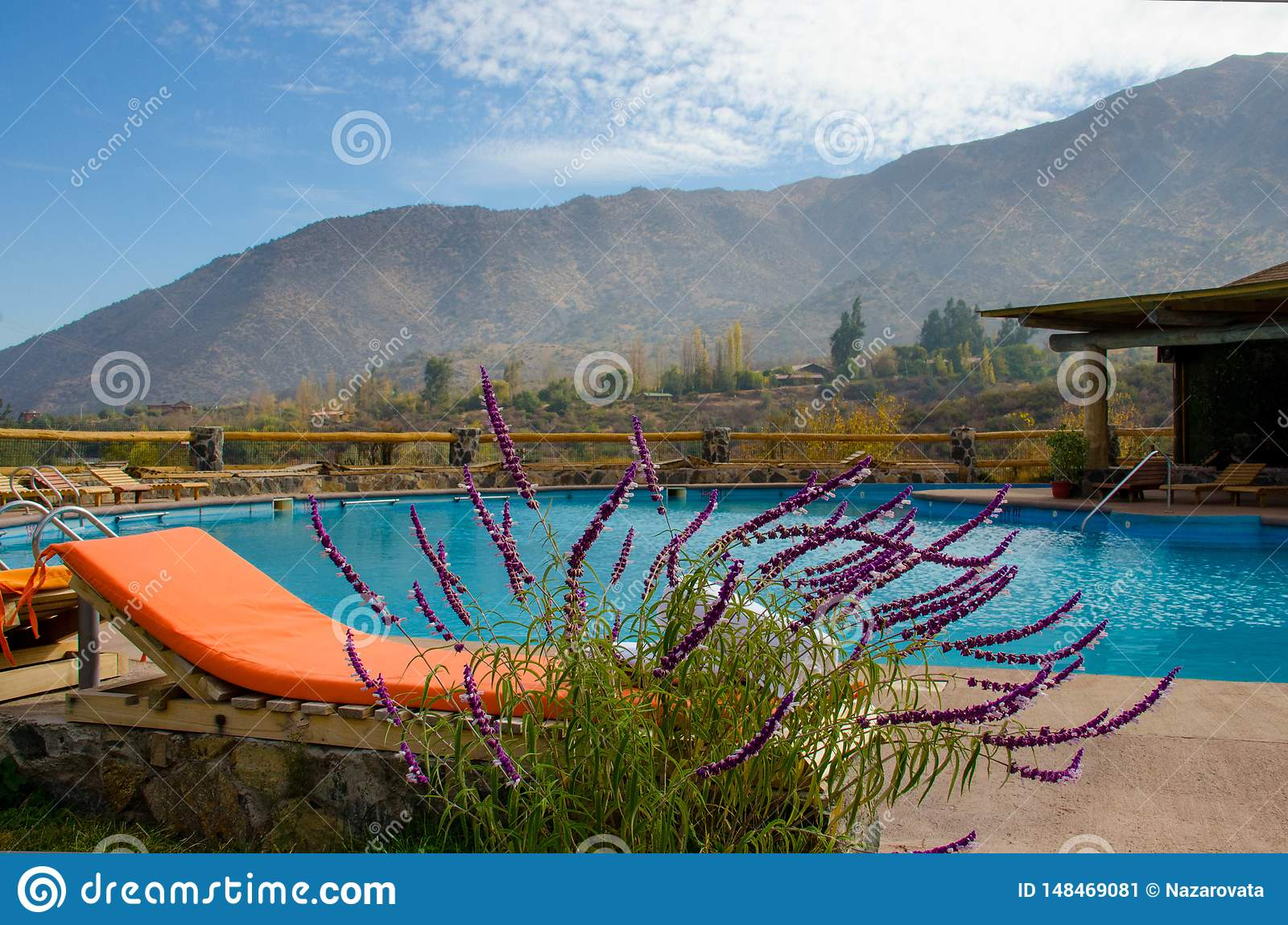 Colored loungers by the pool