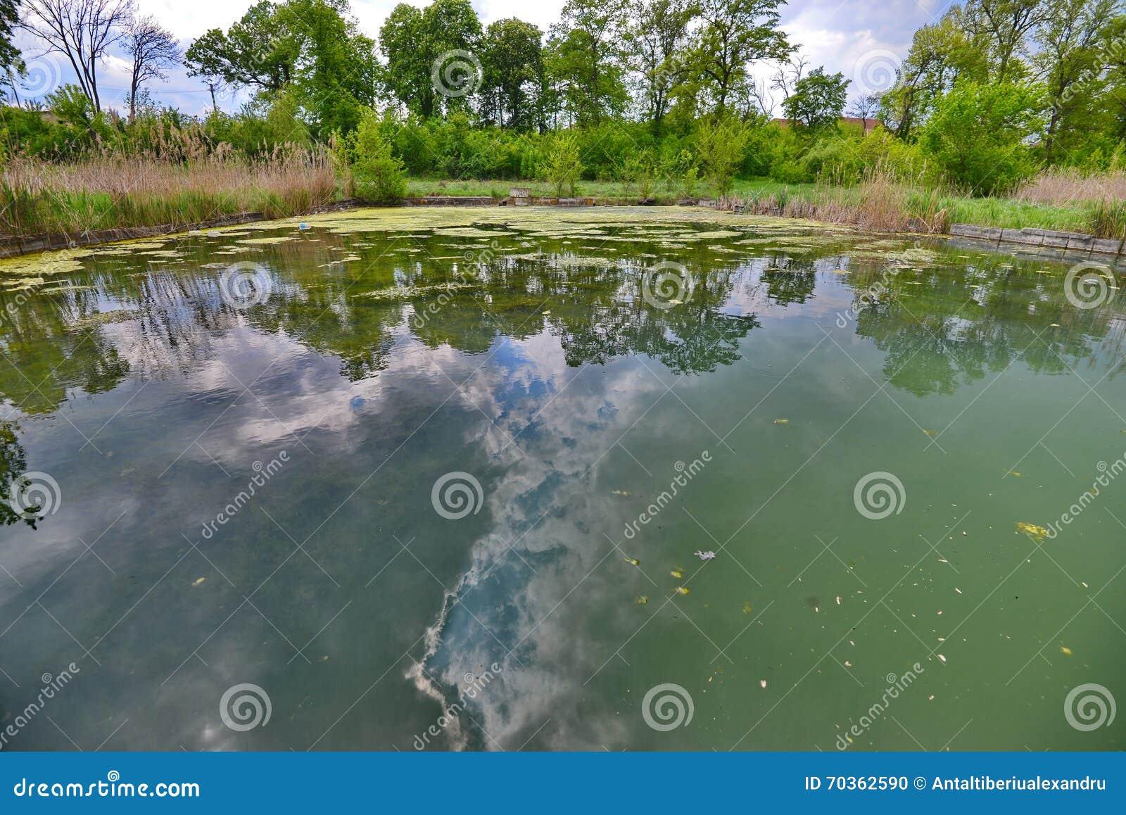 Pool bleibt mit Himmelreflexion von den Someseni-Bädern nahe Klausenburg