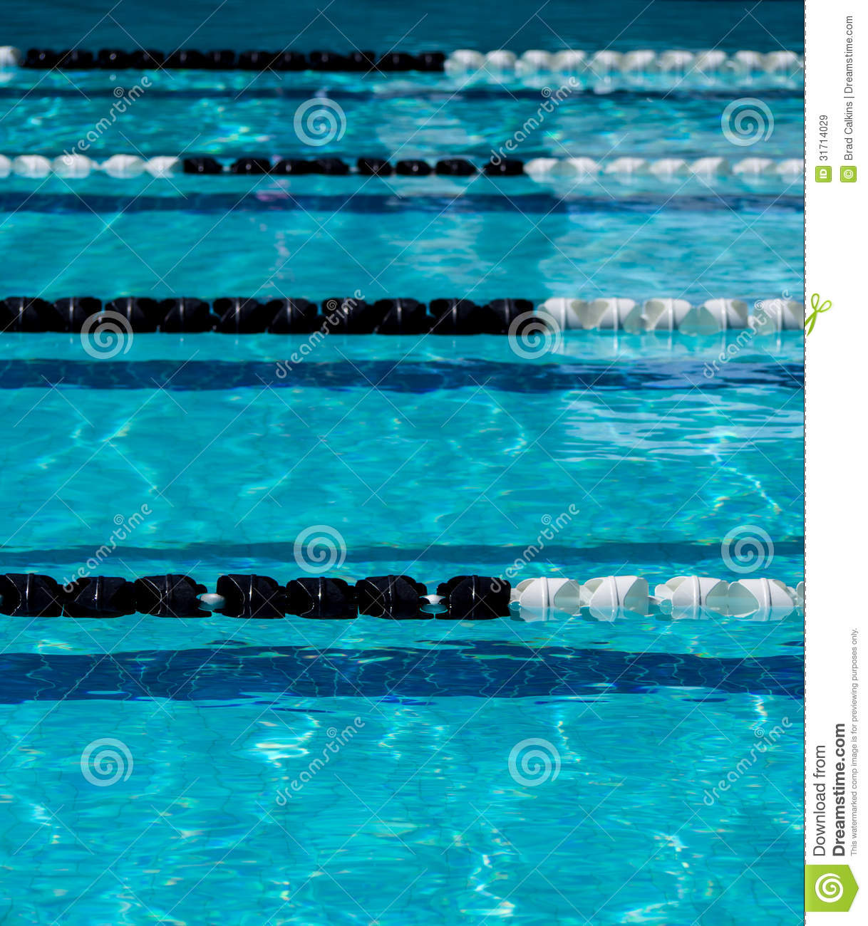 Pool Lane Ropes Stock Image Image Of Background Pool