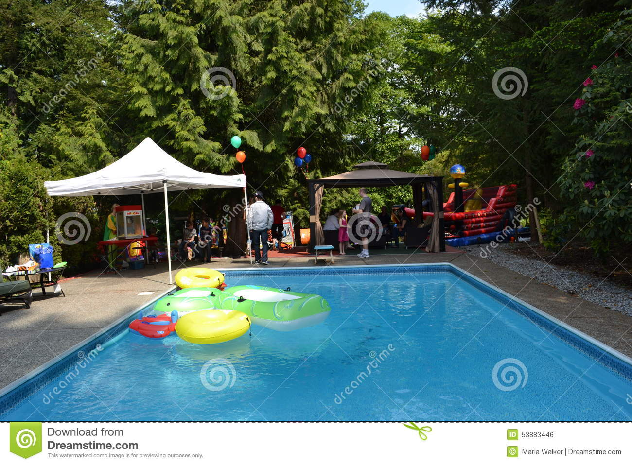 Pool party editorial photo image 53883446 for Garden pool party