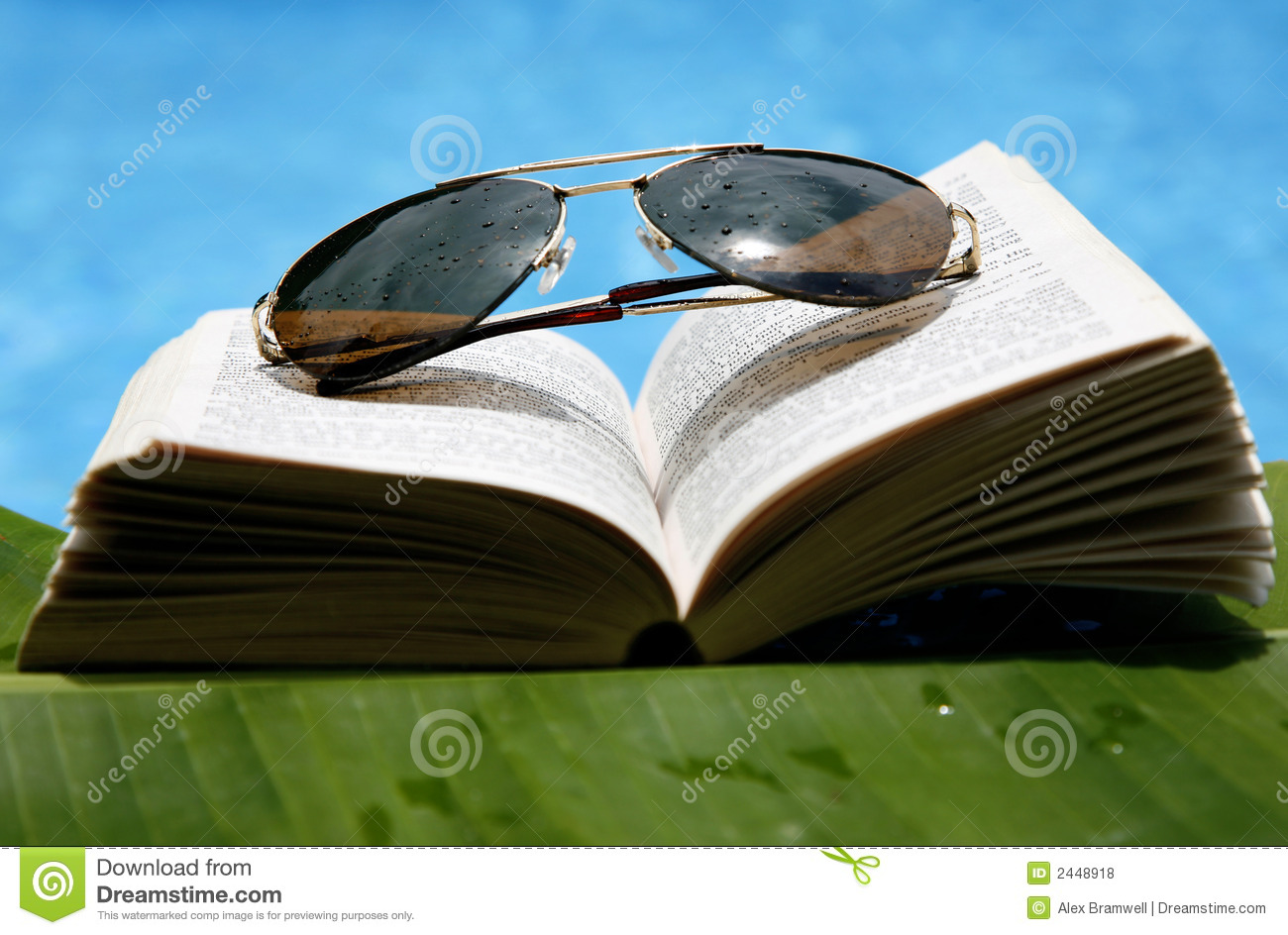 Pool Reading Royalty Free Stock Photos Image 2448918