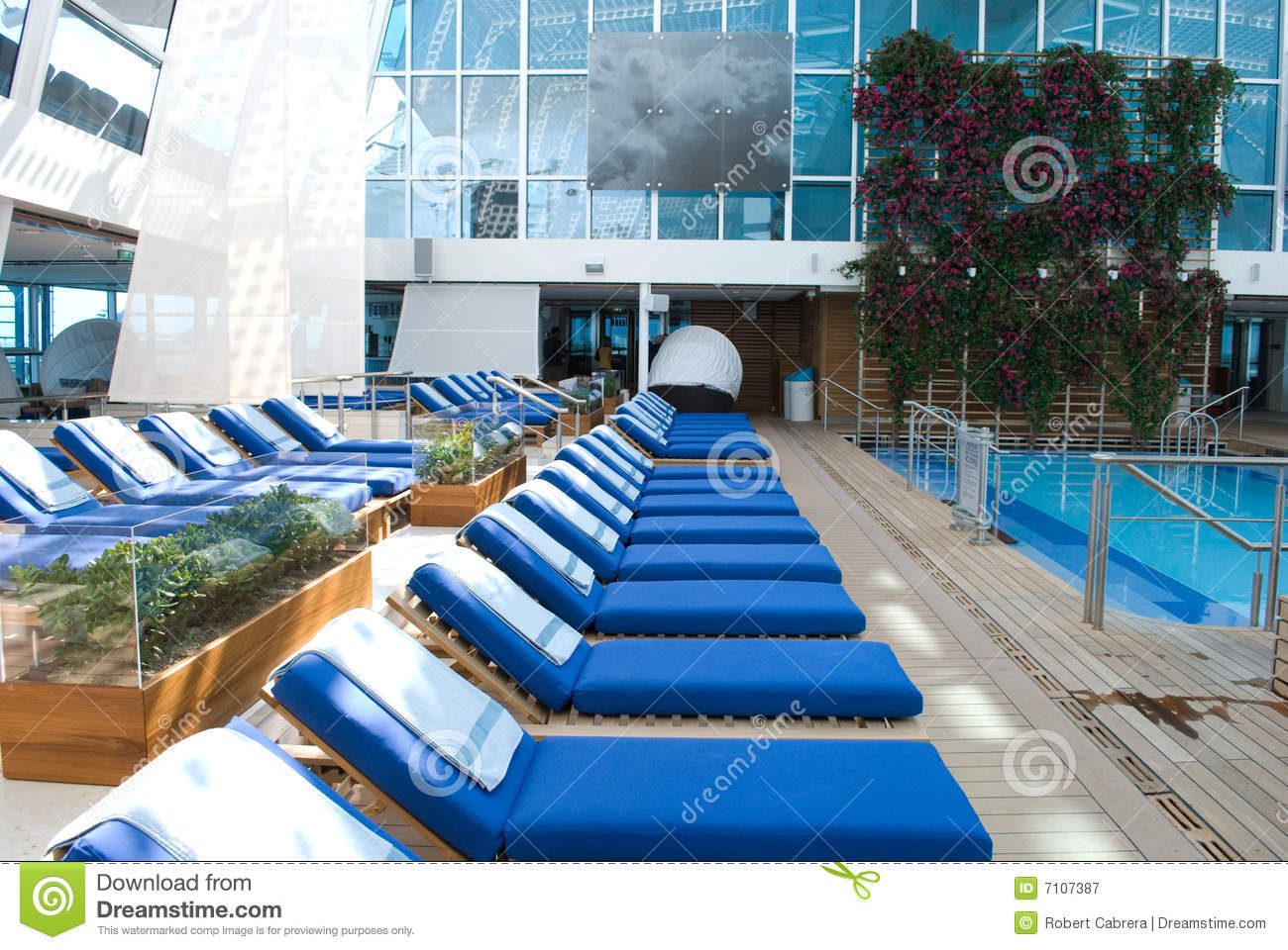 Pool Side Chaise Lounge Chairs Stock Image Image Of Blue