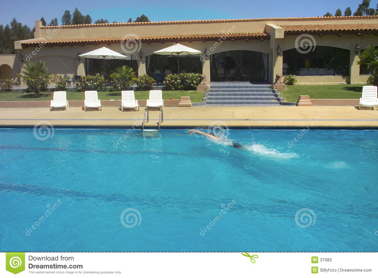 Pool and swimmer