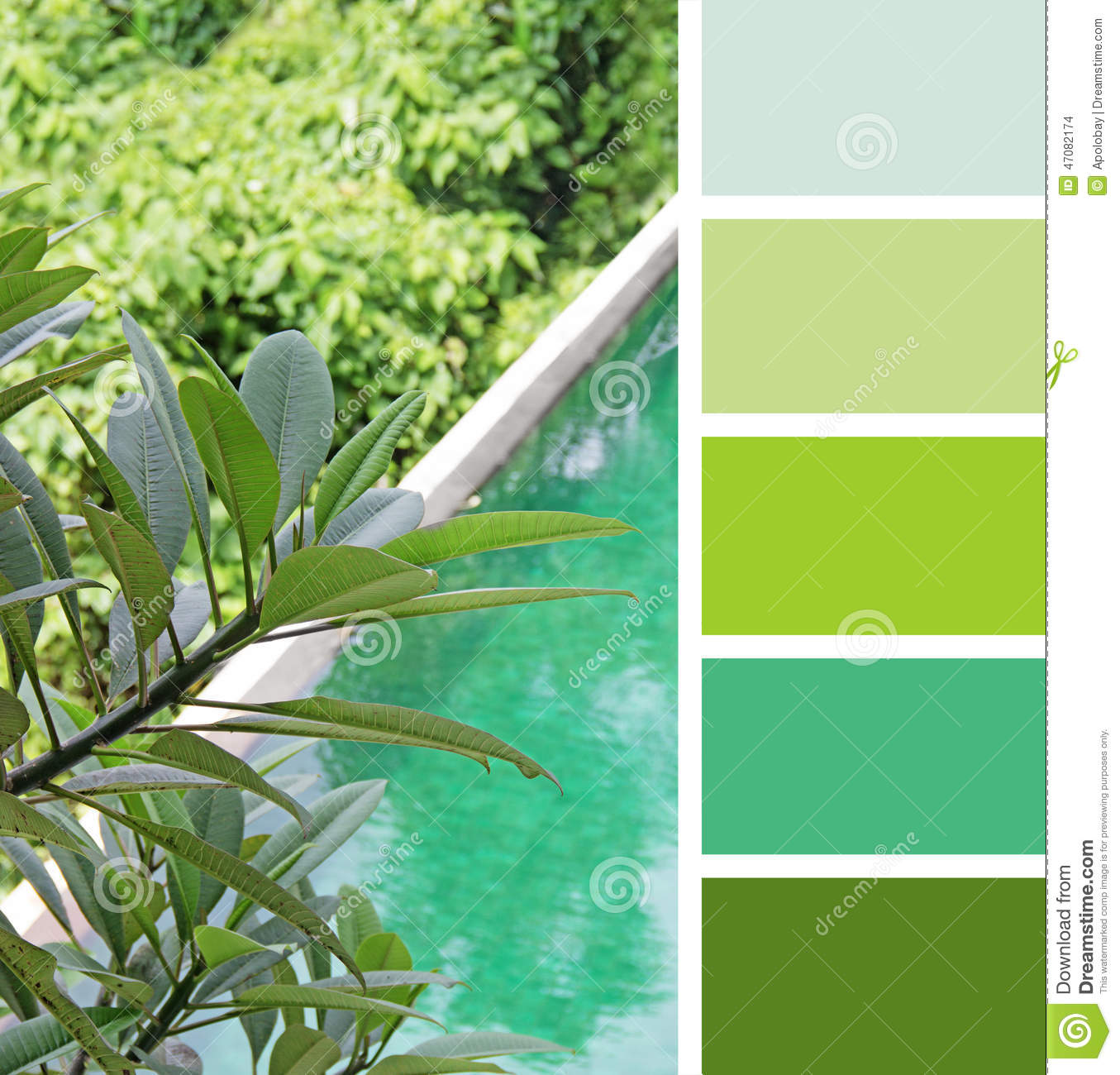 Pool A Top View. Color Palette Swatches. Pastel Hues Stock Photo ...