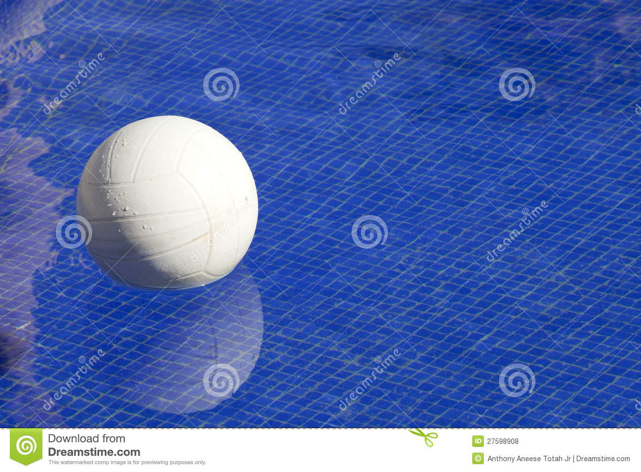 Pool volleyball royalty free stock photos image 27598908 for Pool design for volleyball