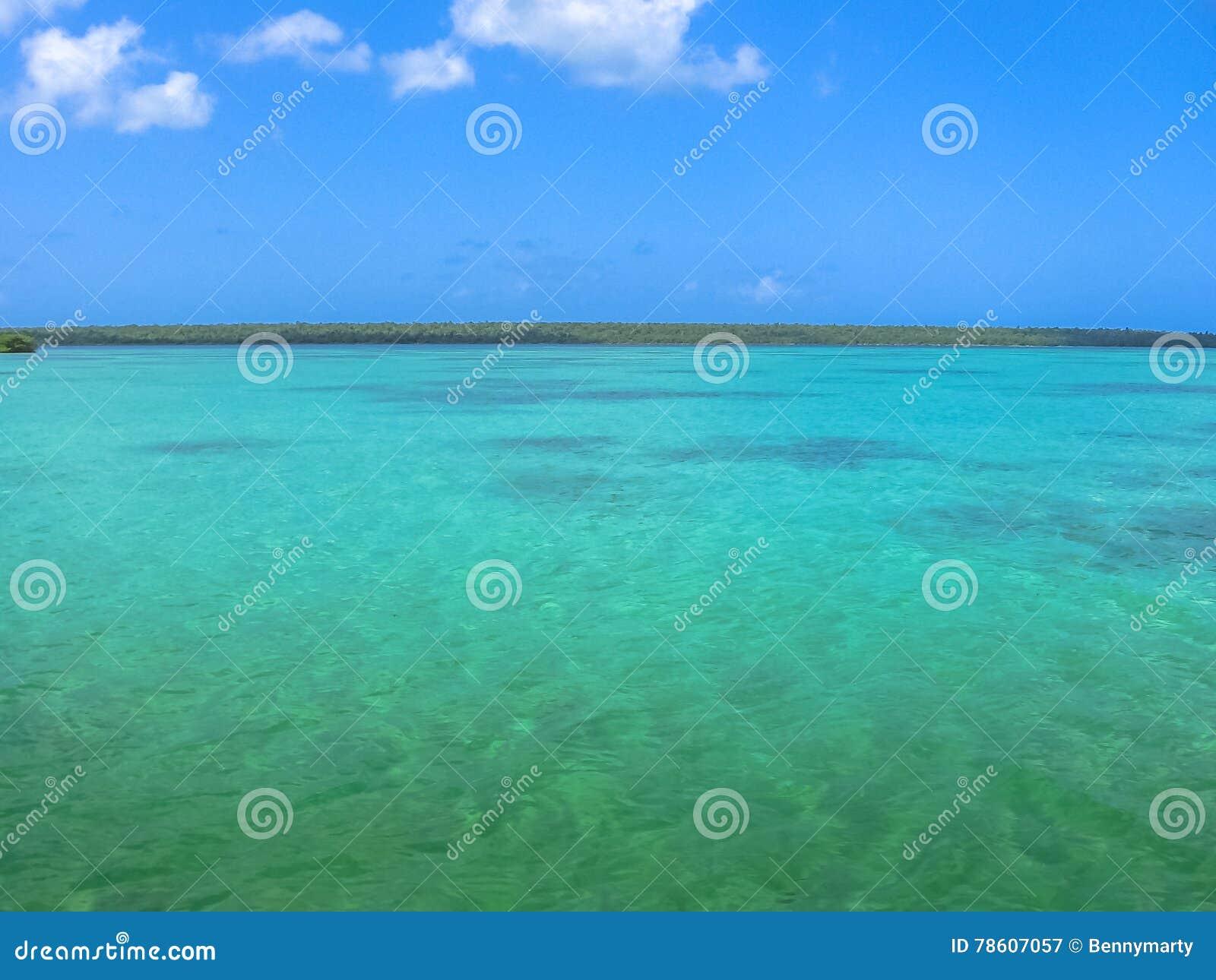 Pools Isla Saona