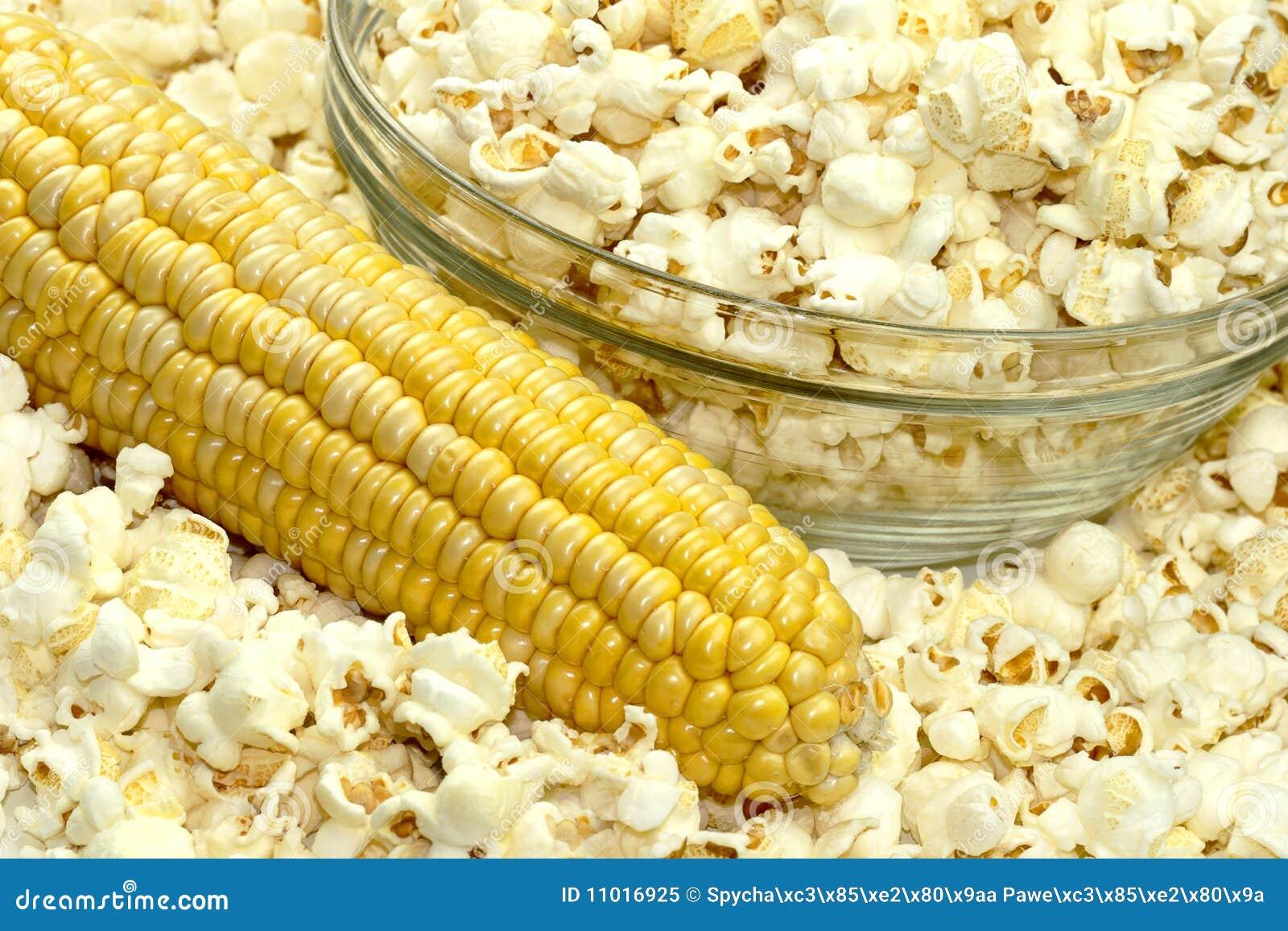 Popcornmais dm