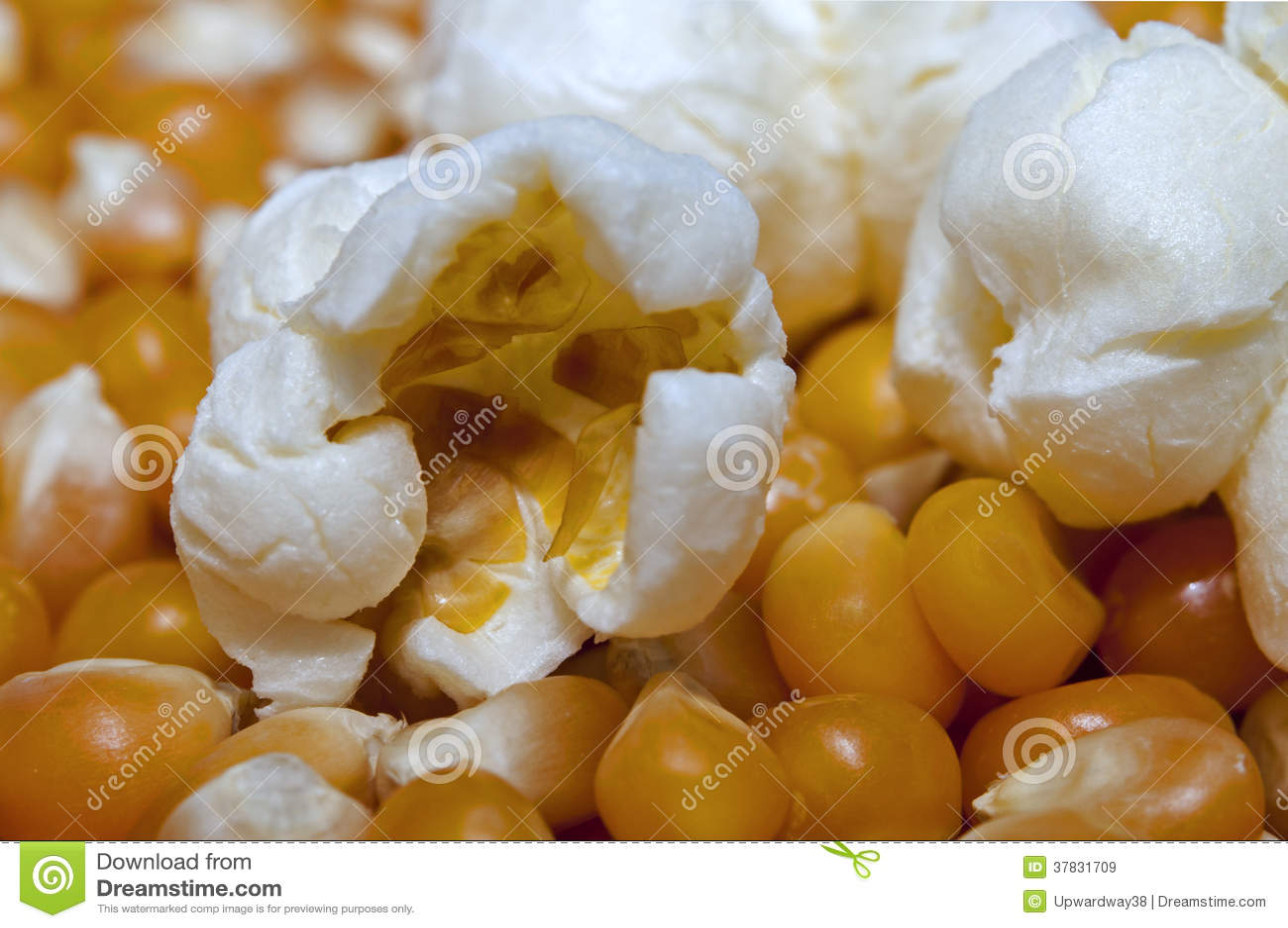 Unpopped Popcorn Kernel Clipart Popcorn and kernels
