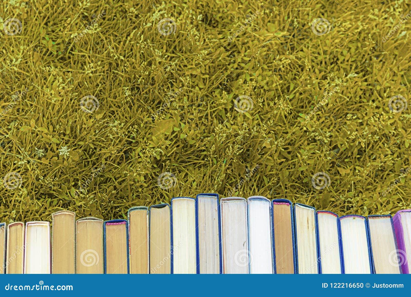Popiera szkoła, zbiera rozsypisko gęste stare książki,