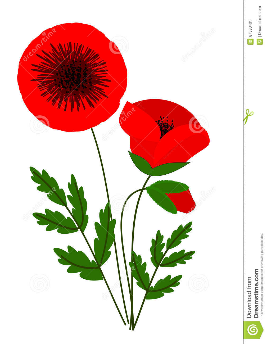 Poppies stock illustration illustration of weeds flowers 87380401 download comp mightylinksfo