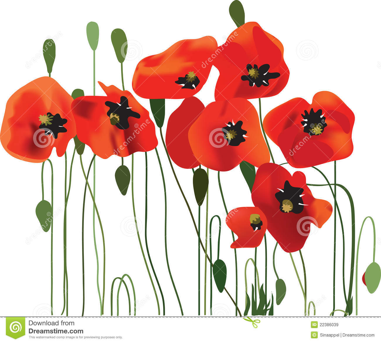 Poppy Background Flower Art Stock Vector Illustration Of Card