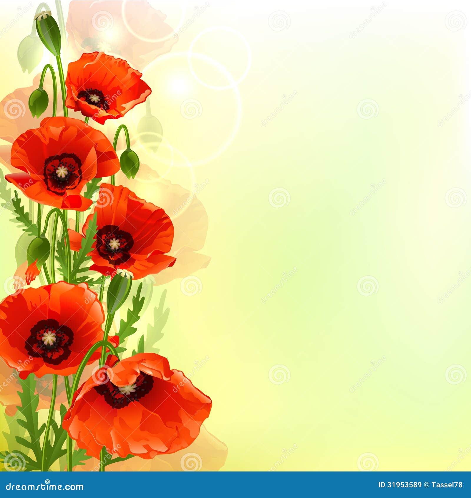 poppy red background - photo #27