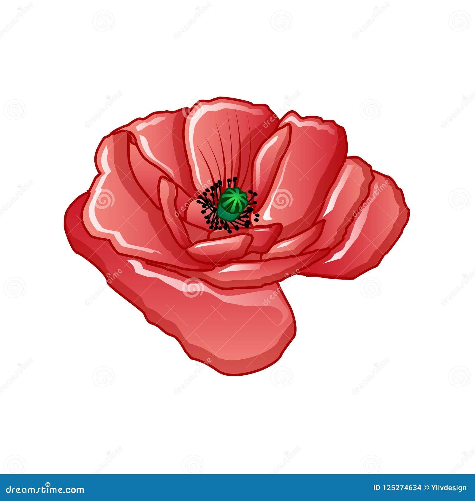 Poppy Flower Icon Cartoon Style Stock Vector Illustration Of