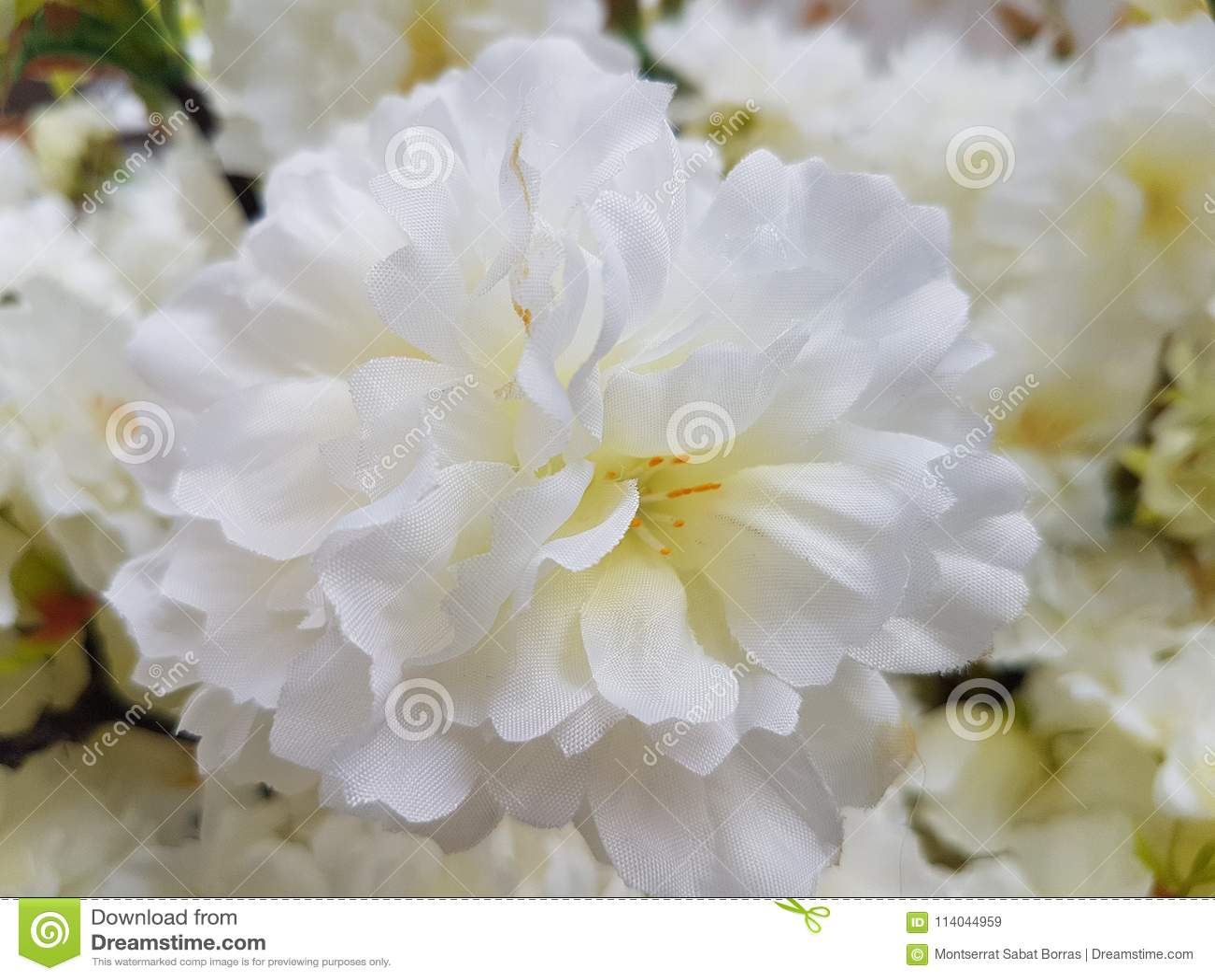 White plastic poppy flowers stock image image of corsage large white plastic poppy flowers mightylinksfo