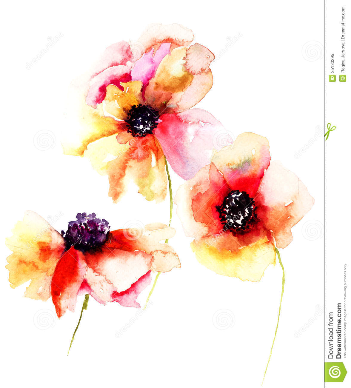 Poppy flowers stock illustration illustration of poppy 35130295 poppy flowers mightylinksfo