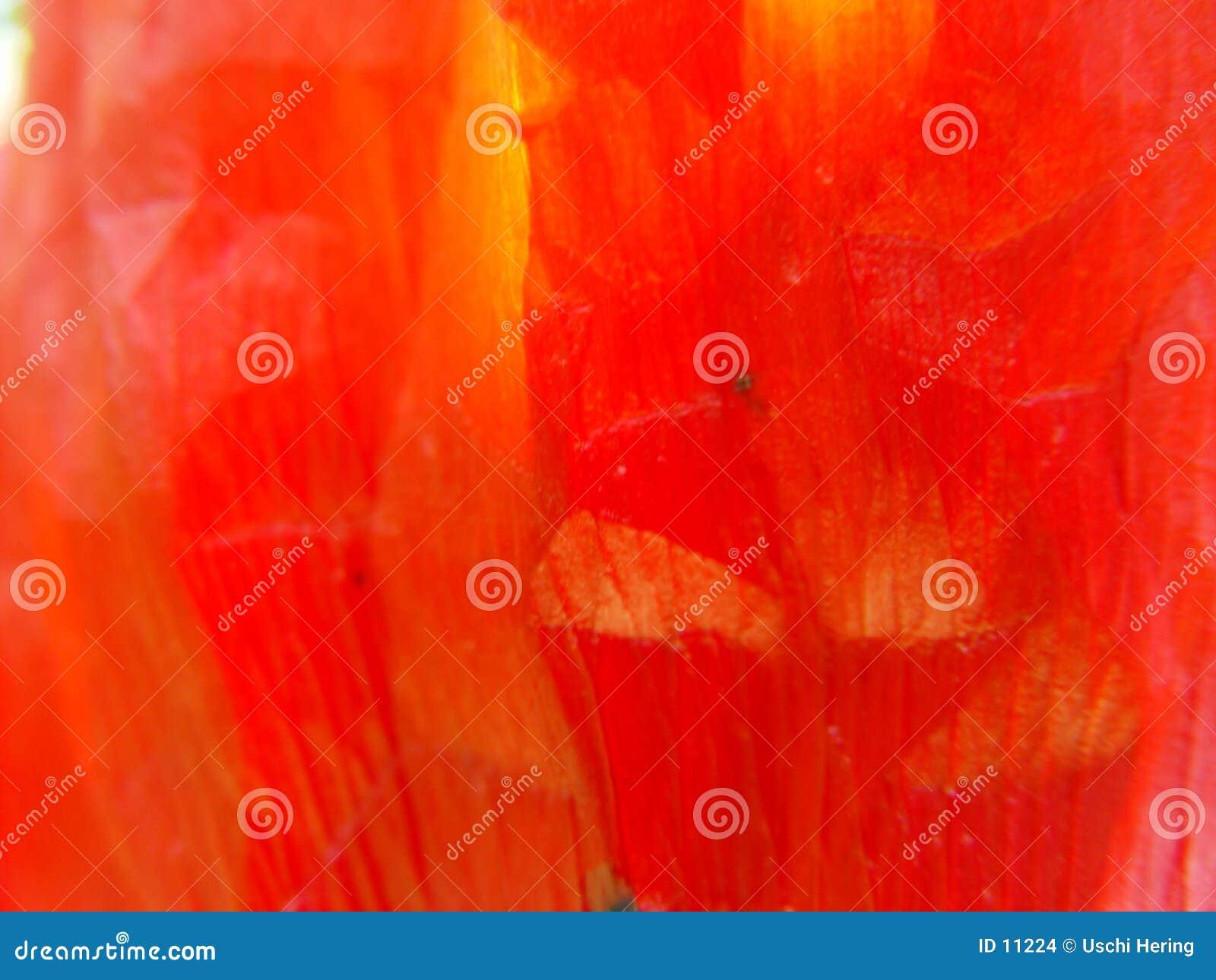 poppy leaf 1